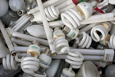 lightbulb recycling